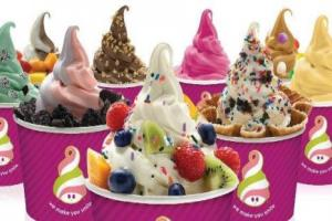Free Deal! Buy One Frozen Yogurt & Toppings and Receive the 2nd One at 50% off at Menchie's Frozen Yogurt in Maple Ridge